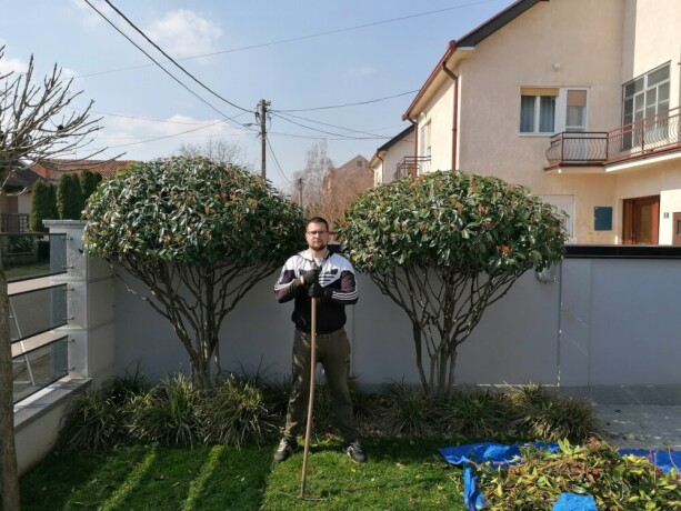 profesionalno-uredenje-dvorista-basta-vrtova-big-0