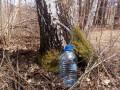 brezina-voda-sa-vlasine-small-3