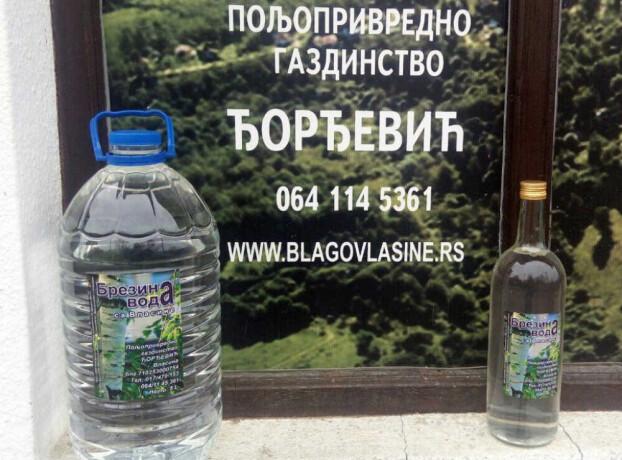 brezina-voda-sa-vlasine-big-0