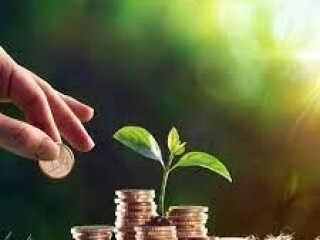Ponuda zajma (KREDIT) 100% garancija