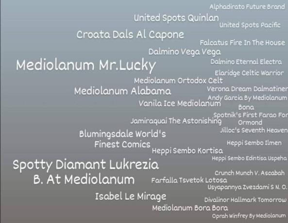 dalmatinski-pas-dve-lepe-zenkice-big-0