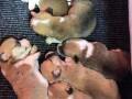 korgi-pembroke-stenci-rezervacije-small-3